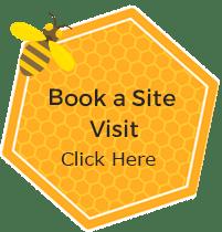 Bees in Schools 1